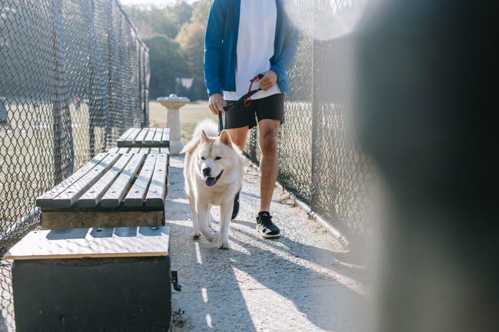 הליכה- פעילות ספורטיבית חשובה לחולי סכרת